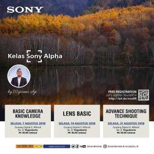 Basic Camera Knowledge Sony
