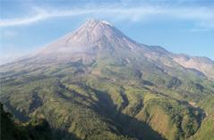 Alam Merapi Tour (Trekking Agro Volcano)