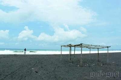 Pantai Trisik: Dari Lahan Pasir sampai Penangkaran Penyu Yogyakarta