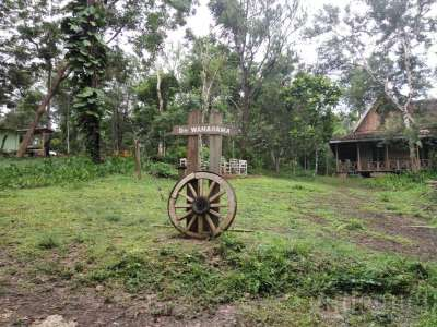 Museum Kayu Wanagama Yogyakarta