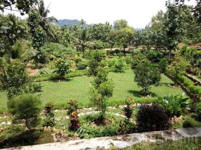 Tamanjamu Naturindo Kulonprogo