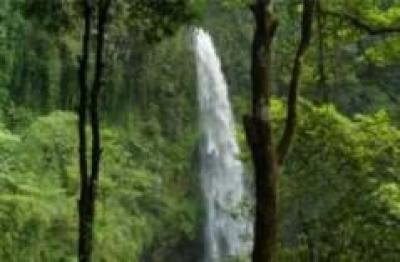 Desa Wisata Karang Tengah Yogyakarta