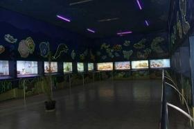 Akuarium di Gembira Loka Zoo Yogyakarta