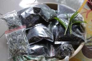 Hasil olahan daun teh di Kebun Teh Tritis
