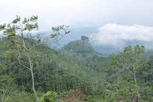 Pemandangan di puncak Kebun Teh Tritis