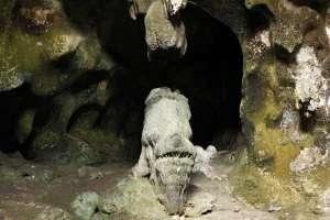 Disebut goa Gajah karena ada batu yang mirip gajah