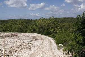 Jalanan menuju curug / jurang Pulosari