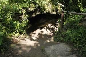 Jalan menurun menuju curug atau jurang Pulosari