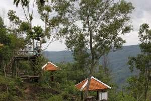 Kebun Buah Mangunan jadi sarana pengembangan sumber daya manusia