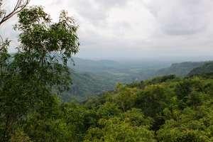 Pemandangan dari kebun buah Mangunan