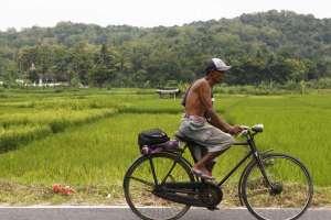 Aktivitas penduduk desa Wukirsari