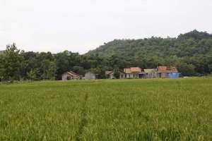 Pemandangan desa Wukirsari