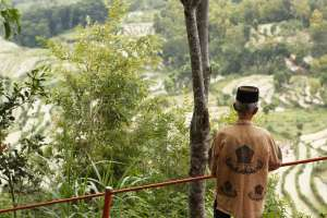 Seorang penduduk desa menikmati hamparan sawah