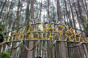 Penanda hutan pinus Mangunan