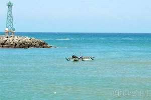 Mercusuar di Pantai Sadeng menjadi daya tarik tersendiri bagi wisatawan