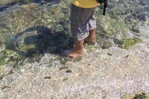 Kejernihan air di pantai Wediombo, Yogyakarta
