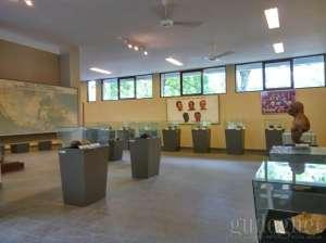 Ruang Gallery Museum Bioantropologi dan Paleoantropologi UGM