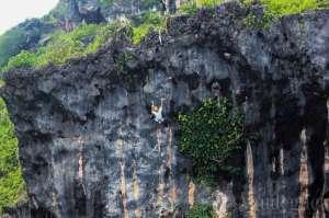 Tebing Siung sebagai sarana panjat tebing alam