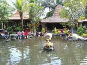 Kolam terapi ikan di Kampung Flory