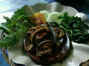Belut goreng di warung Jago Wirosaban