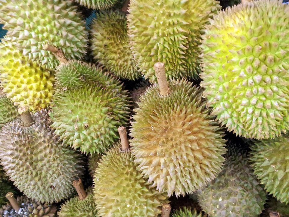 Besok, JCM akan Gelar Durian Fest
