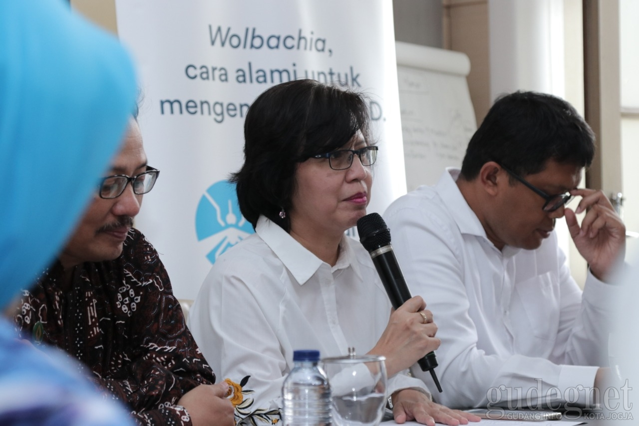 Wolbachia Diharapkan Tekan Sebaran Virus Dengue di Yogya