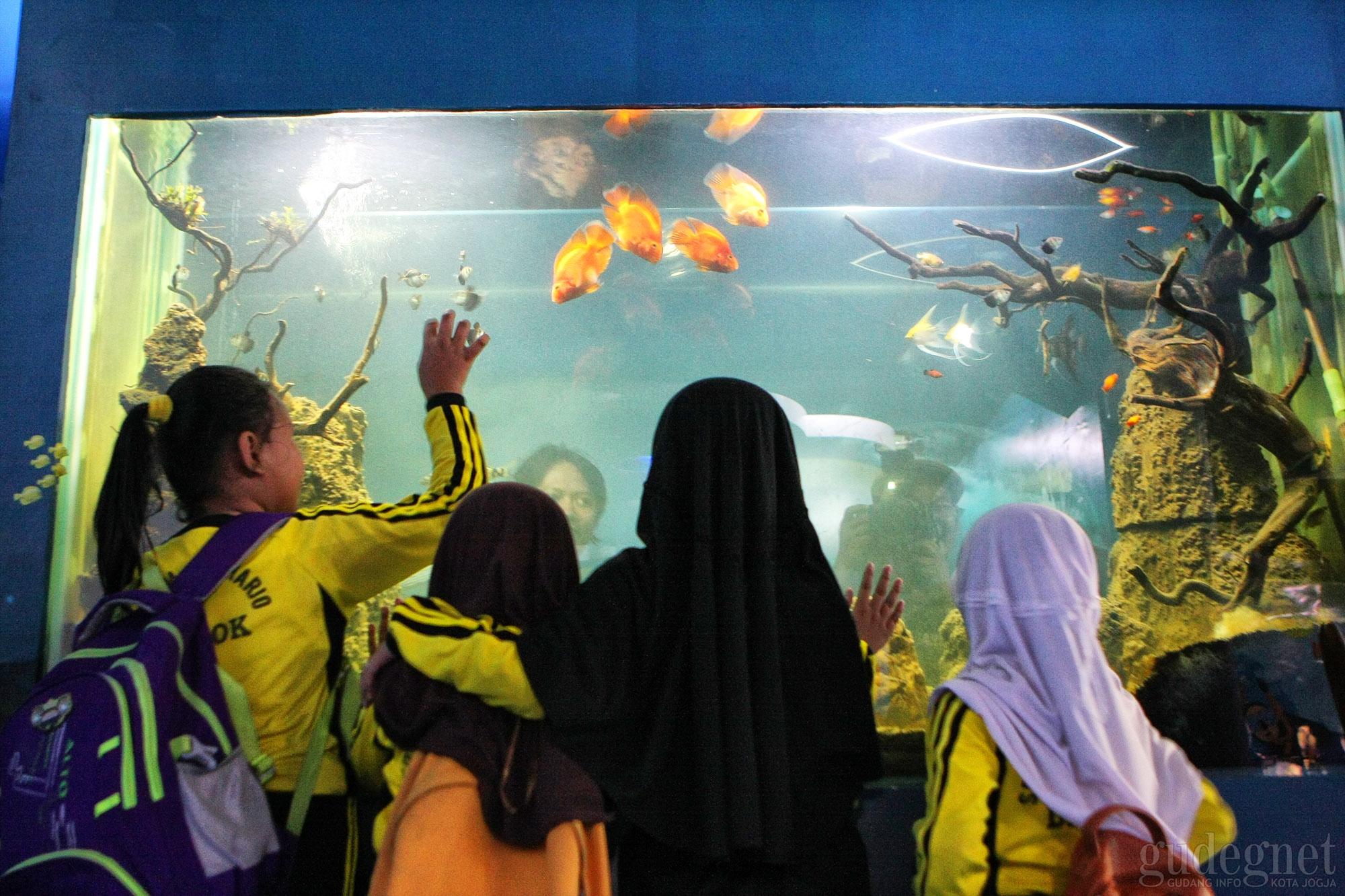 Peringati Hari Air Dunia, Jogja Bay Gratiskan Wahana Museum Water of Life