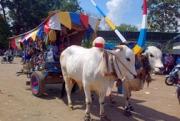 Rela Tak Dibayar Demi Ramaikan Festival Gerobag
