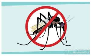 Vaksin dengue selamat datang di indonesia oleh dr fx for Salon wikanz