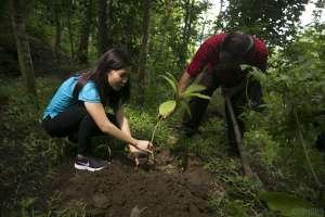 Tetra Pak dan FSC Gelar Edukasi Pengelolaan Hutan yang Baik di Kulonprogo
