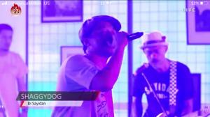Konser 'Reload', Shaggydog Gandeng NDX AKA Hingga Musisi Ska dari Jerman