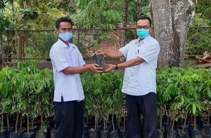 Bantu Pemulihan Ekonomi Warga Karangwuni, Mahasiswa KKN UGM Sumbang 200 Bibit Kelengkeng